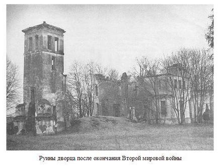 Руины дворца после окончания Второй мировой войны